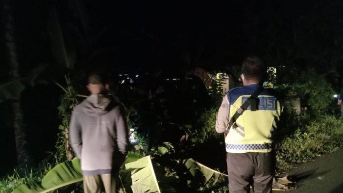 Kecelakaan Maut Tadi Malam, Pengendara Sepeda Motor di Talaud Tewas Tabrak Pohon Pisang