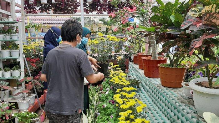 Penjualan Bunga di Tokoh Nawanua Flower, Tomohon