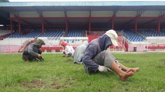 Manajemen Persipura Usulkan ke PSSI 'Home' Sementara di Stadion Klabat Manado