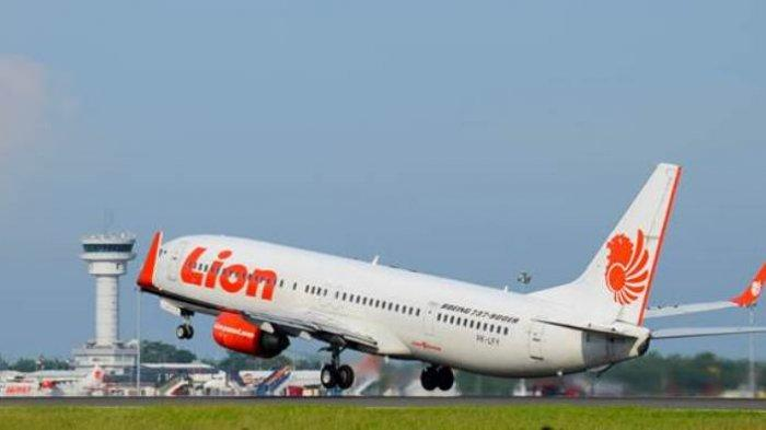 Harga Tiket Manokwari Makassar Tembus Rp 20 Juta Begini Penjelasan Lion Air Tribun Manado