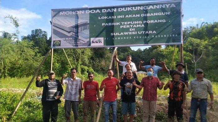 Investor Siap Bangun Pabrik Tepung Porang di Sulut, Tanaman Berjuluk Emas Hijau