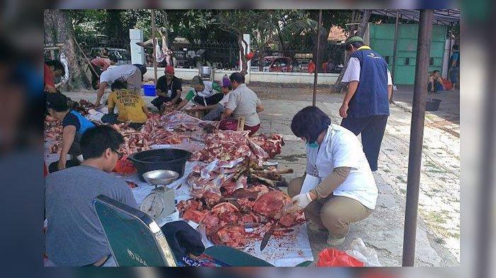 Momen Iduladha, Pembagian Daging Kurban Tak Biasanya, Dilakukan Saat Sudah Diolah Chef Hotel