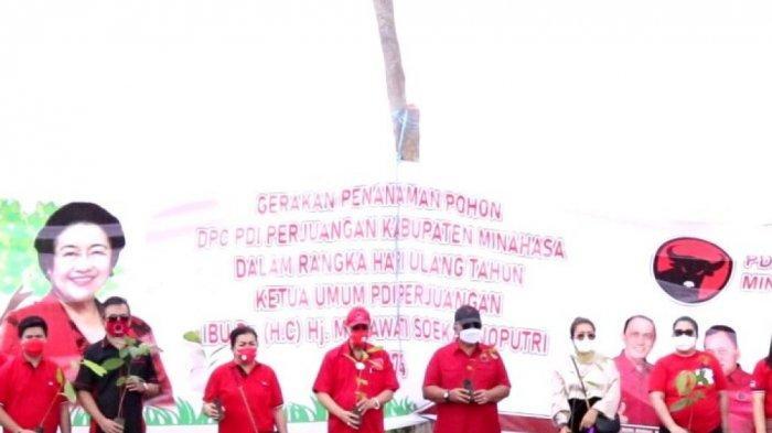 Peringati HUT Megawati, ROR-RD Tanam 100 Bibit Pohon