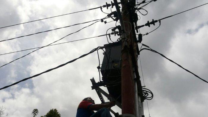 Kabel Listrik Hanya Diikat di Pohon Kelapa, Warga Desa Iyok Desak PLN