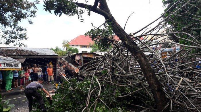 Pak Wali, Tolong Tebang Pohon Kering di Kayubulan