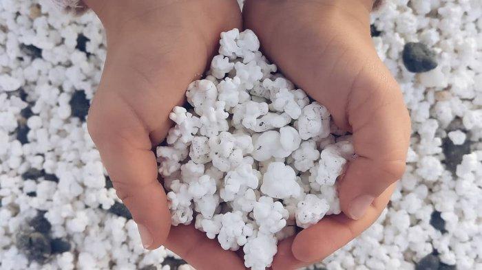 Popcorn Beach, Pantai Unik dengan Pasir Mirip Popcorn di Kepulauan Canary Spanyol