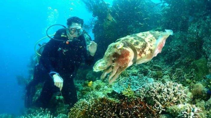 Taman Laut Likupang Minut Siap Dikembangkan, Tak Kalah Indah dari Bunaken