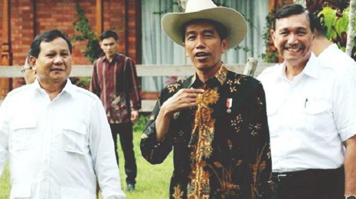 Harta Kekayaan Tiga Menteri Jokowi-Maruf Naik di Masa Pandemi, Siapa Saja?