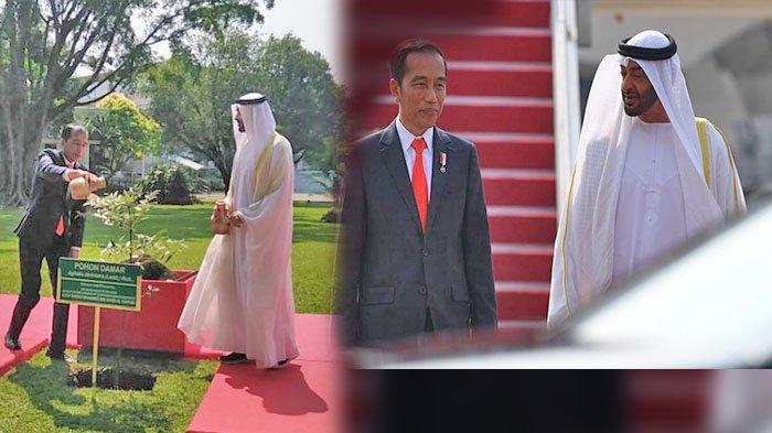 Presiden Joko Widodo mengajak Putra Mahkota Abu Dhabi, Sheikh Mohamed Bin Zayed Al Nahyan untuk menanam pohon di Istana Bogor, Rabu (24/7/2019)