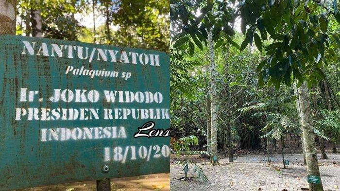 Joune Ganda dan Kevin Lotulung Ingin Rawat Hutan Kenangan
