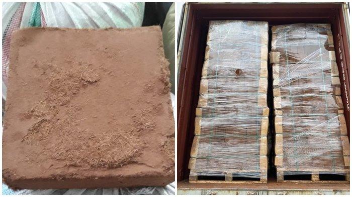 Produk turunan kelapa, 75 ton cocopeat asal Sulut diekspor ke Korea Selatan pekan lalu. Proses ekspor telah melalui proses karantina oleh Karantina Pertanian Manado.