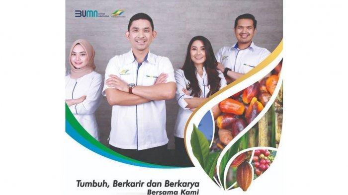 PTPN (Persero) Buka Lowongan Kerja, Cari Karyawan Baru, Dapat 7 Fasilitas, Cek Syarat & Linknya!