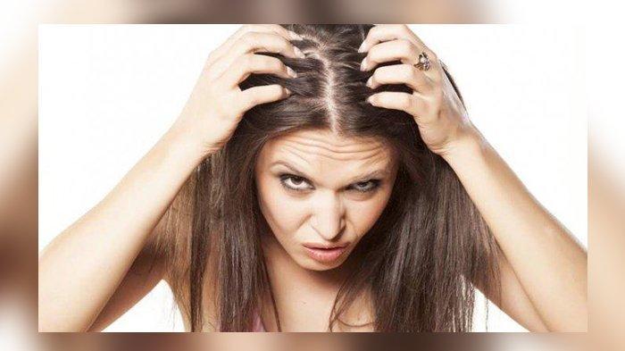 Cara Mudah Menumbuhkan Rambut dengan Cepat, Hanya Menggunakan 4 Bahan Alami Berikut Ini