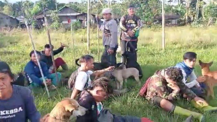 900 Ekor Anjing Pemburu Berlomba Buru Hama Babi Hutan di Desa Tondei Minahasa Selatan