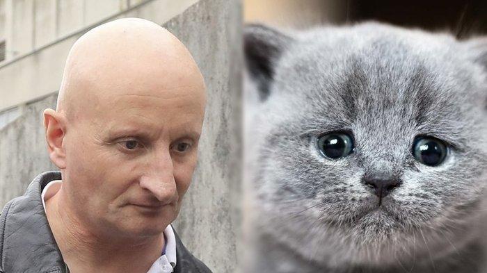 Sadis, Pria Ini Dipenjara Selama 5 Tahun Lebih Akibat Bunuh 9 Ekor Kucing dengan Pisau