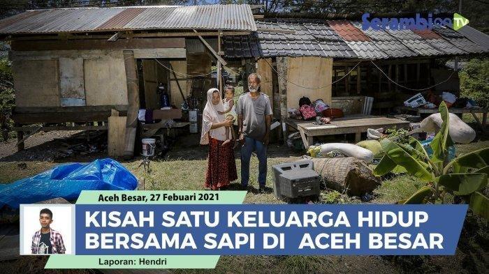 Cerita Pilu Abdullah, Warga Aceh yang Harus Tinggal Berdampingan dengan Sapi Bersama Keluarganya