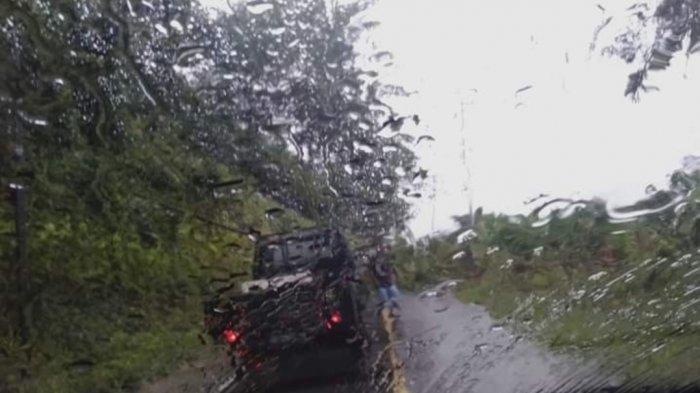Pohon Tumbang Tutup Akses Jalan Bolsel Sulawesi Utara - Gorontalo