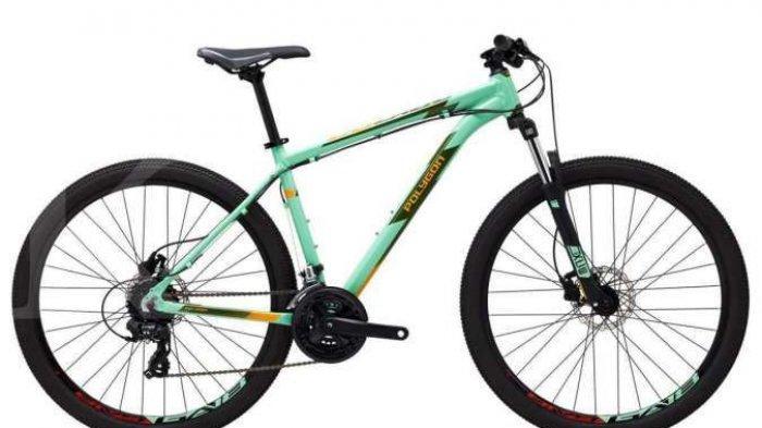 Aturan Baru: Sepeda Wajib Dimasukkan dalam Surat SPT