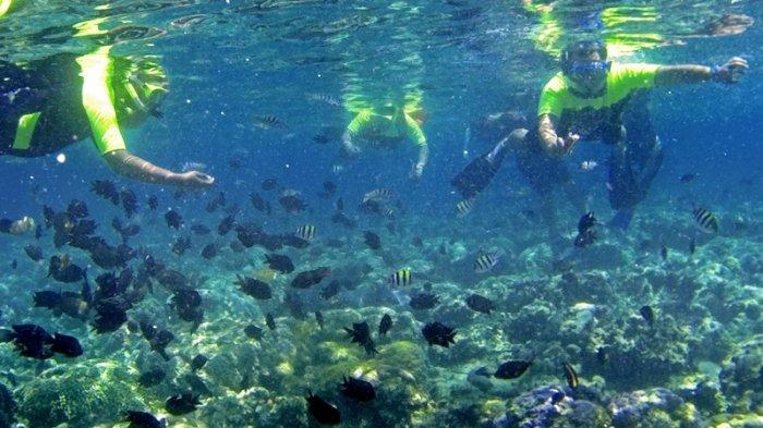 Manado Tuan Rumah Festival Celebrate the Sea, Kampanye Melawan Perdagangan Hiu dan Kemasan Plastik