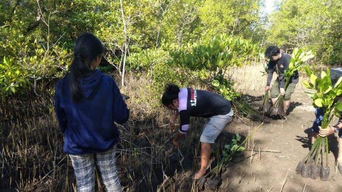 Komunitas Pecinta Alam Tanam Mangrove di Pusomaen Minahasa Tenggara