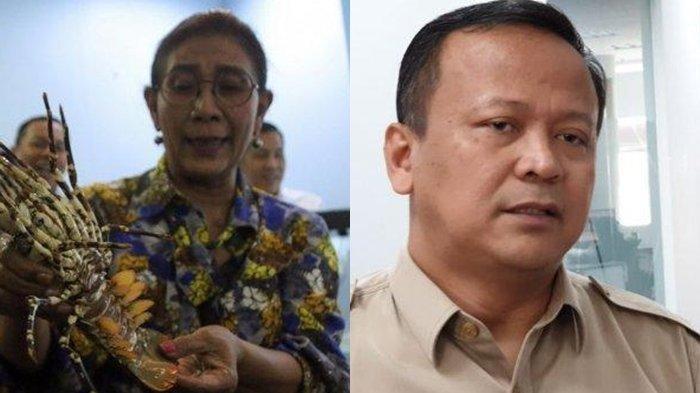 Susi Pudjiastuti Bantah Pernyataan Edhy Prabowo & Pamer Data Ekspor Lobster RI Meningkat Sejak 2016
