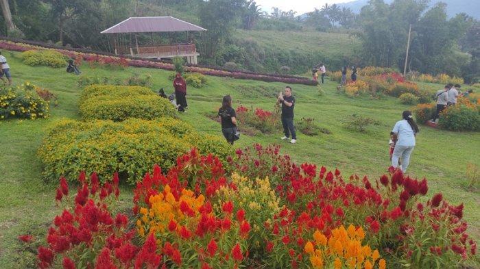 Taman Bunga Pelangi Tomohon, Sepenggal Surga di Kaki Gunung Lokon