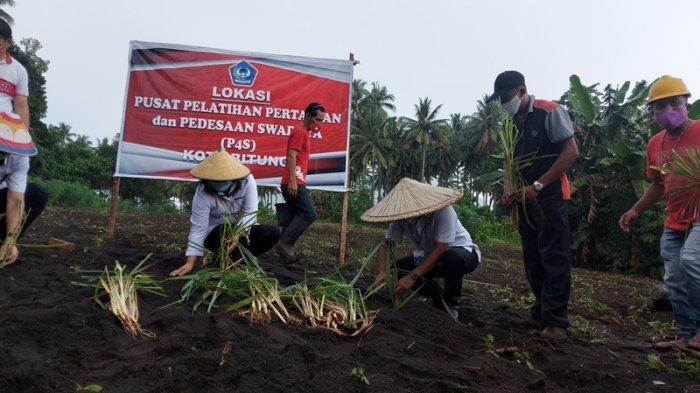 Wali Kota Maurits Mantiri, Dorong Sektor Pertanian di Antaranya Sereh, Enau dan Durian