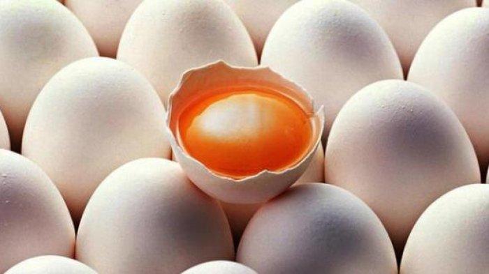Manfaat Telur Ayam Kampung, Salah Satunya Bisa Mencegah Penyakit Kanker