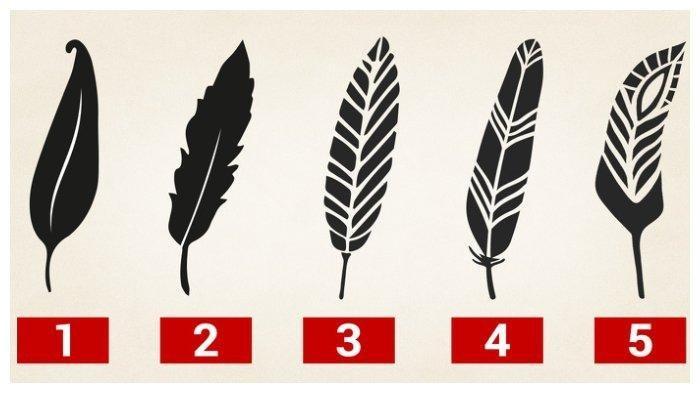 TES KEPRIBADIAN: Pilihlah Gambar Pena Bulu Berikut, Bisa Memahami Sisi Kekuatanmu yang Tersembunyi