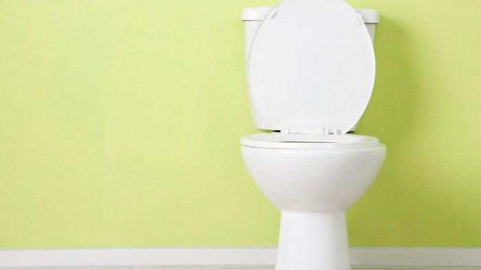Waspada Pakai Toilet Duduk dengan Posisi Ini, Ternyata Berpotensi Kena Infeksi Saluran Kencing