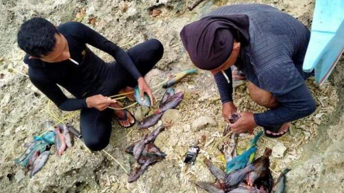 Tradisi menangkap ikan dengan cara dipanah oleh warga Talaud.