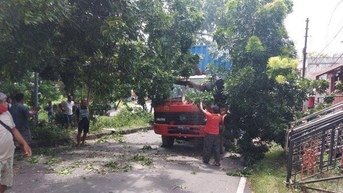 Kecelakaan Tadi Pagi di Puncak Intan, Truk Tronton Terbalik dan Kontainer Tabrak Pohon Perindang