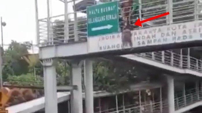 Wanita Galau Bunuh Diri Lompat dari Jembatan dalam Kondisi Hamil, Gara-gara Kekasihnya, Ini Videonya