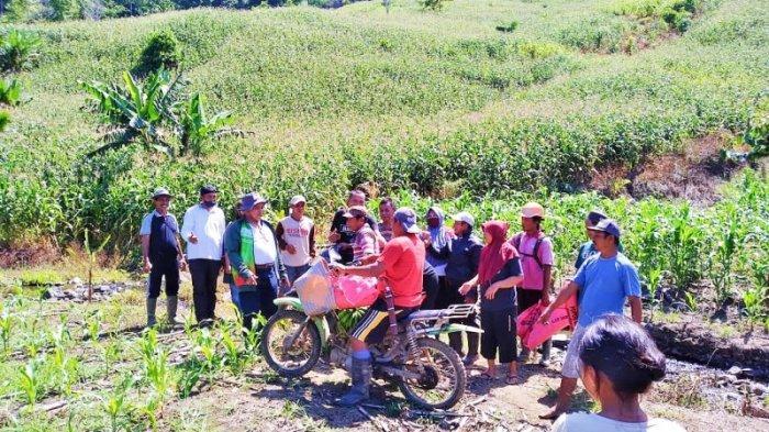 Kendarai Sepeda Motor, Wabup Bolmut Amin Lasena Kunjungi Petani di Desa Tuntung - wakil-bupati-bolmutamin-lasena-terjun-langsung-menemui-petani-desa-tuntung.jpg