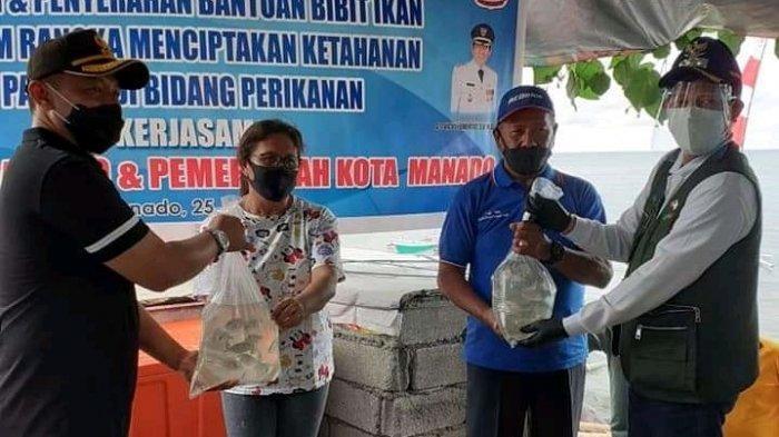 Wali Kota Bersama Kapolresta Manado Memanen dan Menyerahkan Bibit Ikan