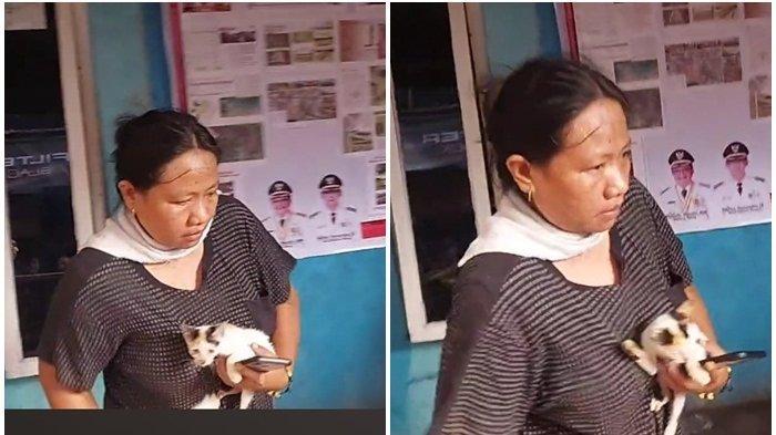 Warga Ini Selamatkan 8 Ekor Kucing di Lokasi Kebakaran Hebat di Pasar Tua Bitung