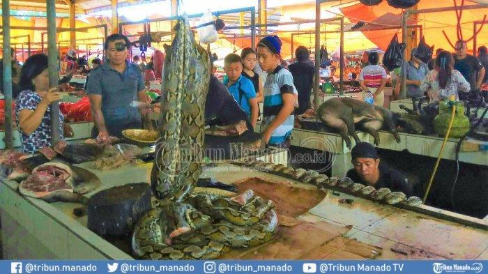 Pengucapan Syukur Serentak di Sulut, Waspada Kolesterol Naik, Ini 10 Makanan Tuk Turunkan Kolesterol