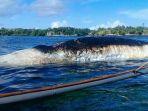 bangkai-ikan-paus-di-pesisir-pulau-biaro-sitaro-sabtu-1442018_20180414_183529.jpg