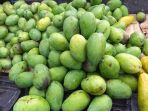 buah-mangga-yang-dijajakan-irma-di-pinggir-jalan-ring-road-manado-sulawesi-utara09.jpg