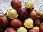 buah-matoa-memiliki-banyak-manfaat-untuk-kesehatan.jpg