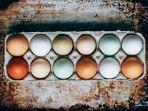 cangkang-telur-ayam-memiliki-warna-berbeda-yang-didapat-dari-gennya-dfgdfgdf.jpg