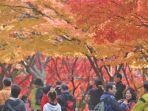destinasi-wisata-gratis-korea-selatan-traveling-ke-luar-negeri-tetap-hemat-budget_20181108_131744.jpg