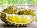 durian-46326326.jpg