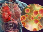 foto-ilustrasi-penyebaran-virus-corona-dalam-tubuh-manusia.jpg