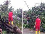 giat-pmi-boltim-bersama-warga-desa-togid-memangkas-dan-membersihkan-pohon-roboh.jpg