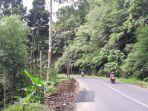 gunung-potong_20180310_180233.jpg