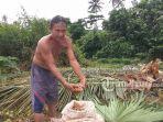 hasan-menunjukan-buah-coklat-hasil-panennya-disamping-pohon-kelapa-yang-baru-saja-ditebang.jpg