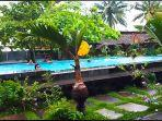 hotspring-swimming-pool-di-kelurahan-koya-tondano-minahasa-jadi-tempat-favoritejhjh.jpg