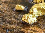 ilustrasi-emas-yang-ditemukan-di-tambang-324.jpg