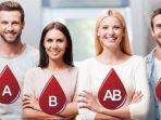 ilustrasi-golongan-darah-a-bo-dan-ab-3473473.jpg